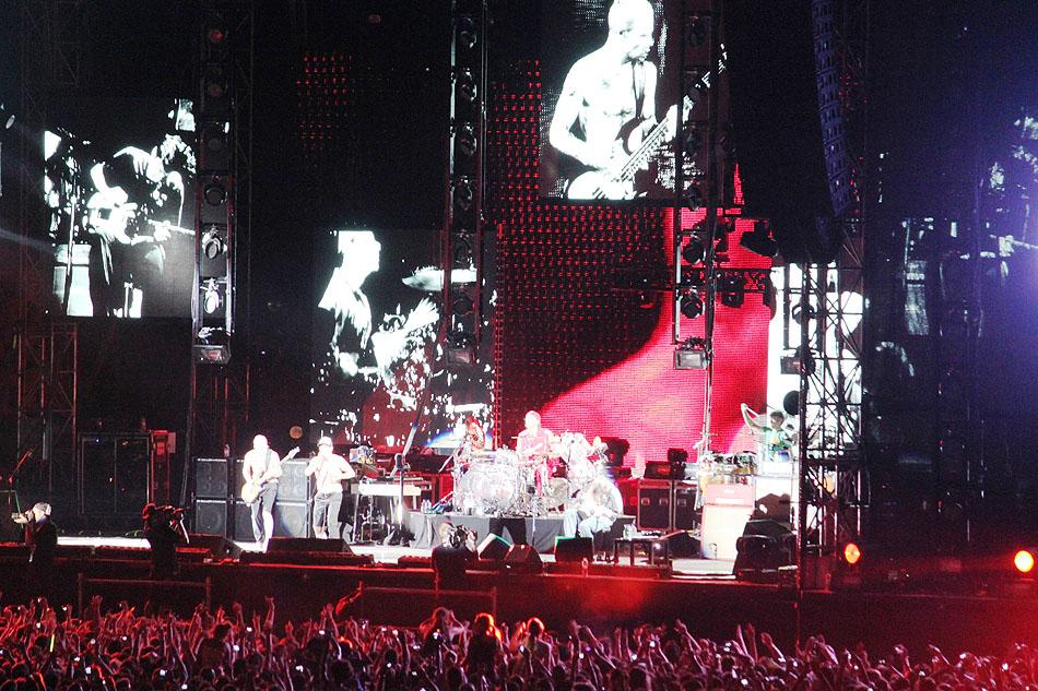 sunaylia_Red_Hot_Chili_Peppers_37