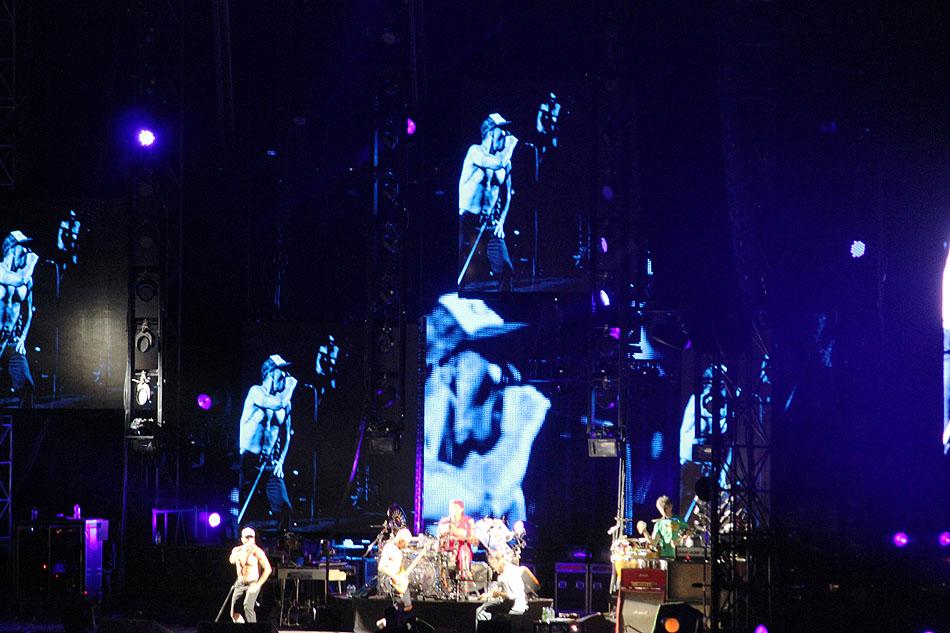sunaylia_Red_Hot_Chili_Peppers_41