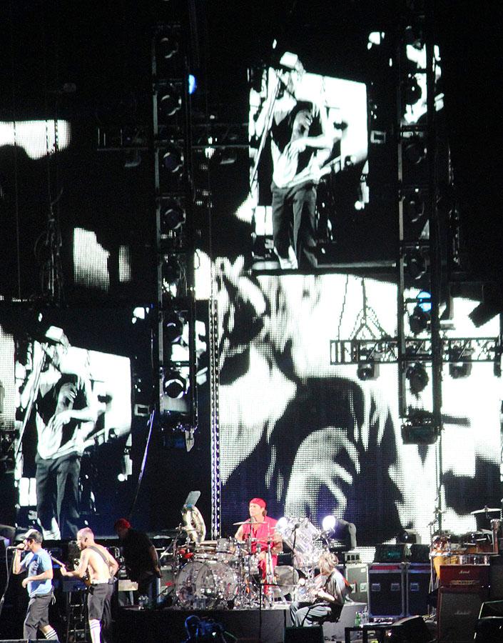 sunaylia_Red_Hot_Chili_Peppers_49