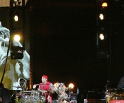 sunaylia_Red_Hot_Chili_Peppers_17