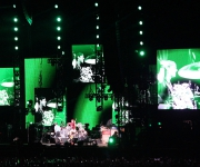 sunaylia_Red_Hot_Chili_Peppers_28