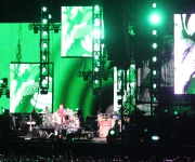 sunaylia_Red_Hot_Chili_Peppers_29