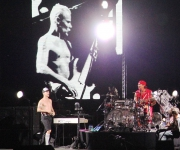 sunaylia_Red_Hot_Chili_Peppers_34
